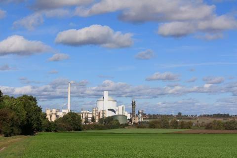 مصانع السكر في الفيوم -مصنع على أرض خضراء