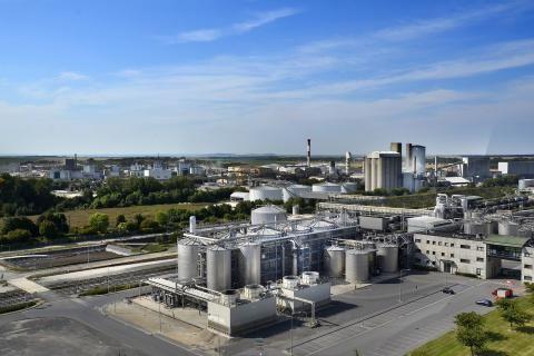 مصانع السكر في الصعيد -صورة لمصانع السكر