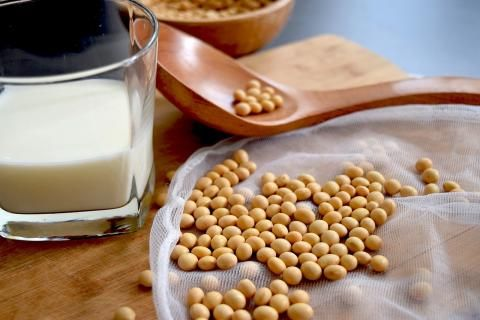 شكل حليب الصويا وحبوب الصويا