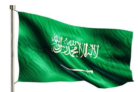 استعلام عن طلب تنفيذ في السعودية